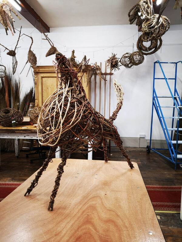 willow-fox-students-creative-with-nature