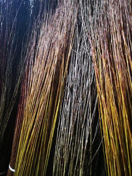 bundle willow